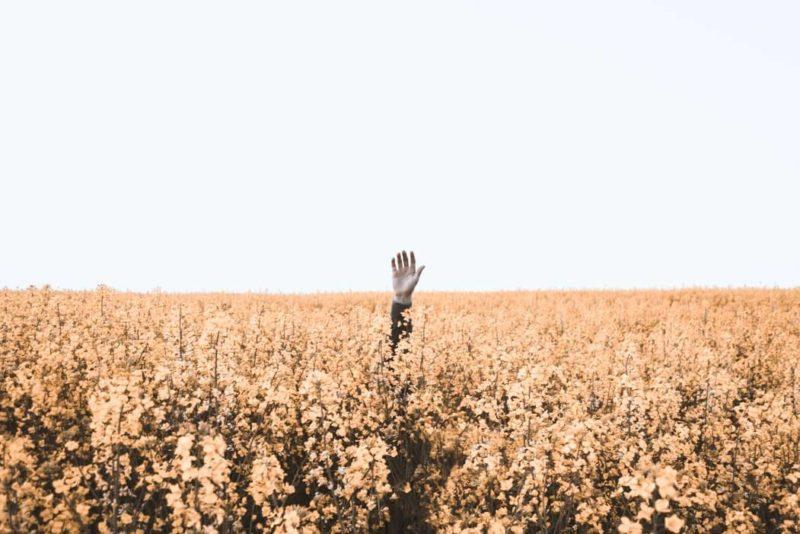 まとめ:『今を生きる』とは自分自身が迷子にならないための目印になる